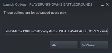 steam launch options pubg