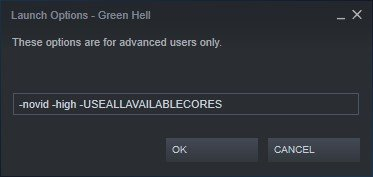 green hell steam launch options