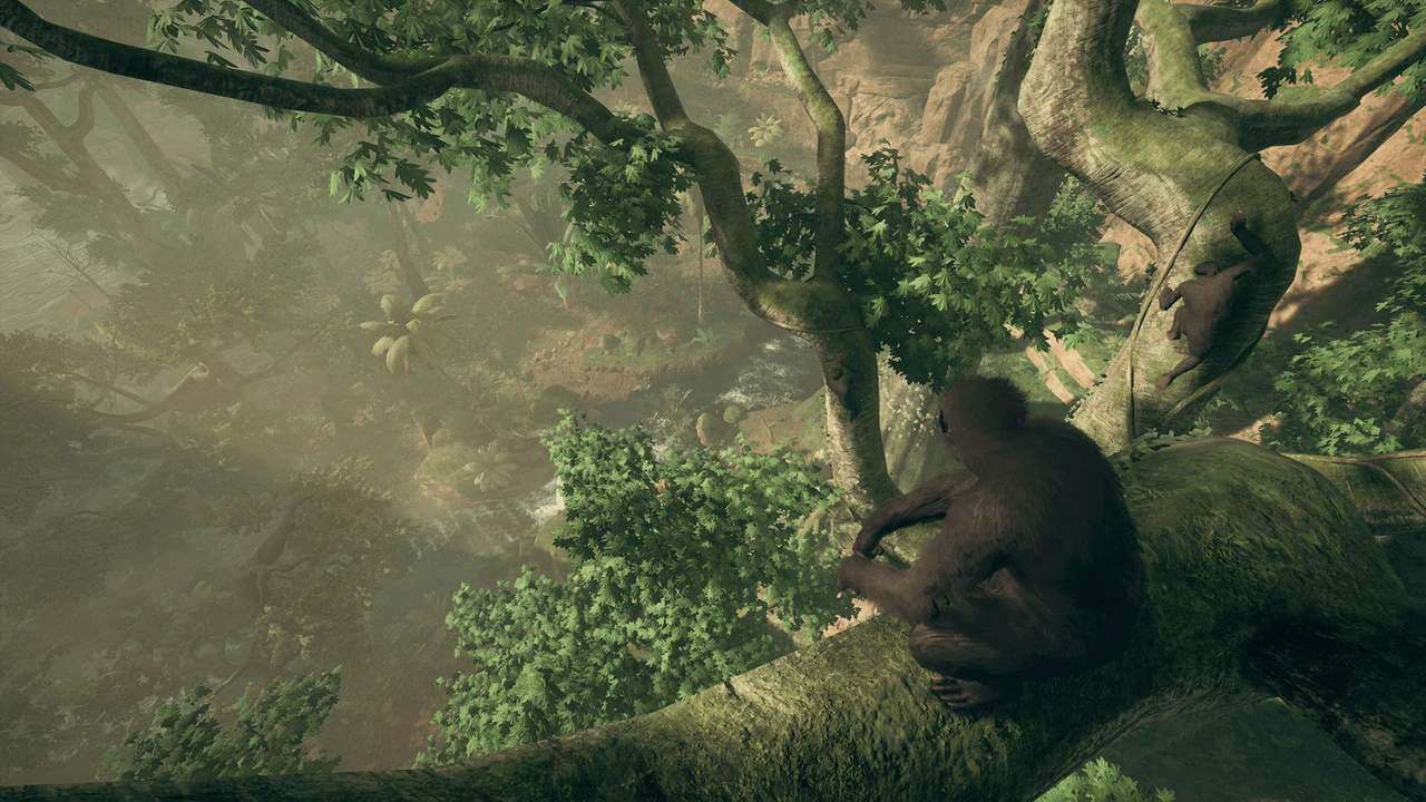 Ancestors: The humankind Odyssey best graphics settings